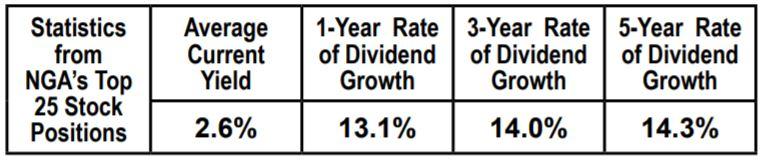 Statistics from NGA's Top 25 Stock Positions Chart | Naples Global Advisors, SEC Registered Investment Advisor